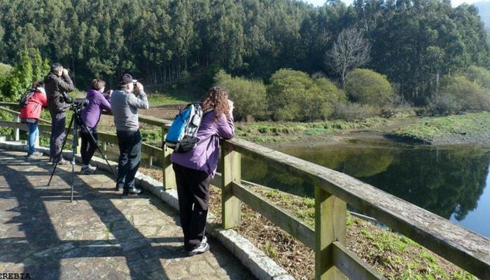 4 razóns polas que facer turismo rural en Trabada: birding